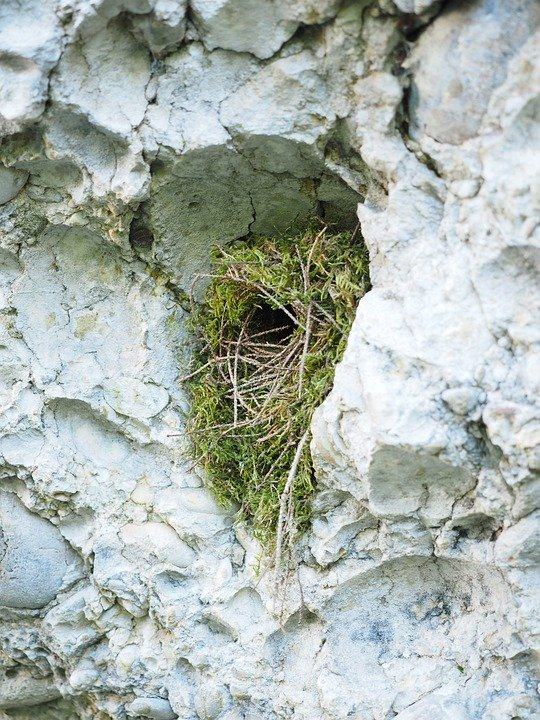 Is your Nest Secure in the Rock ??